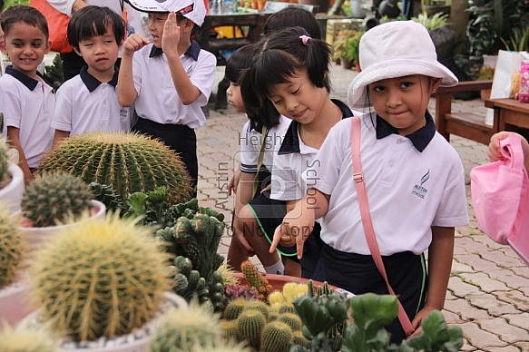 2014 - Reception Year IPC Field Trip to Katsura Nursery